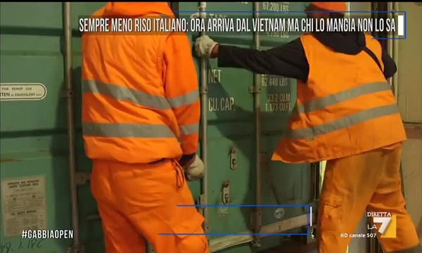 Sempre meno riso italiano arriva dal vietnam ma chi lo for Schuhschrank no name 05 sp